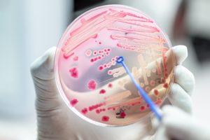 Antibiotikaresistenzen