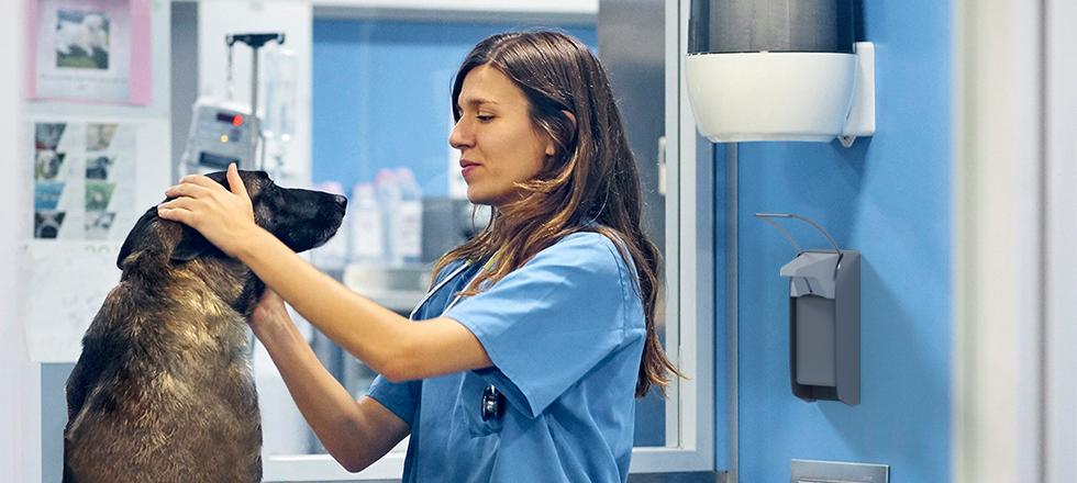 Hygiene in Tiermedizin mit OPHARDT